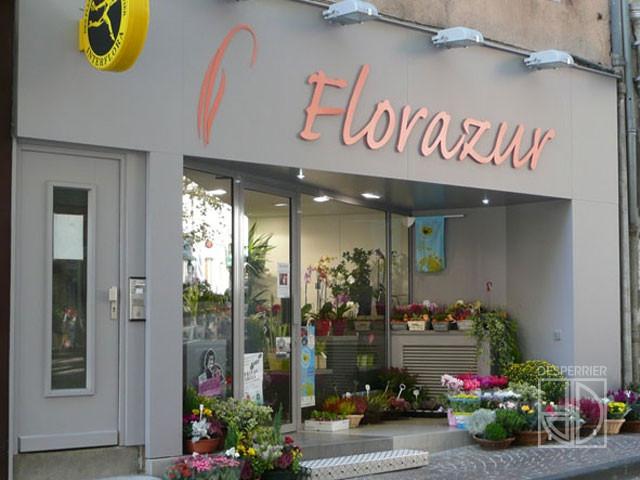 cr ation et agencement de magasins fleuriste desperrier. Black Bedroom Furniture Sets. Home Design Ideas